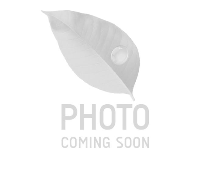 Вентилятор для BAXI (710365100)